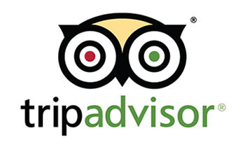 trip-advisor-review-great-food-burgers-fries-the-chattaway-st-petersburg-fl
