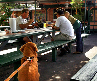Local Dog Friendly Restaurant